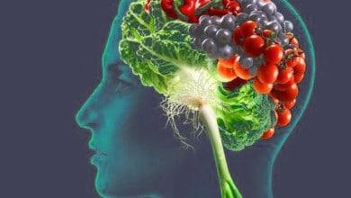 صورة الاطعمة التي تقوي وظائف الدماغ