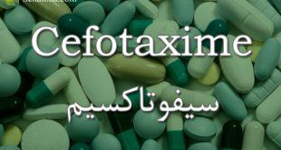 Cefotaxime