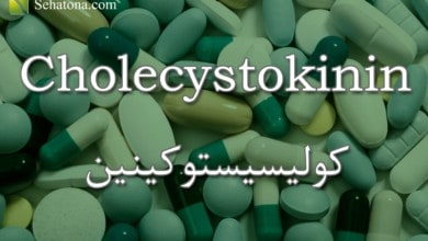 Cholecystokinin
