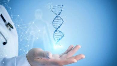 صورة الوراثة والصحة