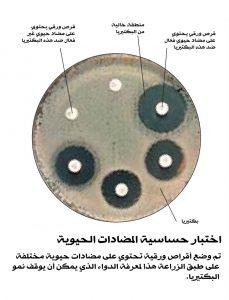 antibiotic-sensitivity-test