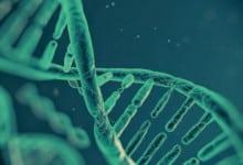Photo of البصمة الوراثية: ثورة في عالم الهندسة الوراثية