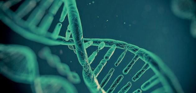 البصمة الوراثية: ثورة في عالم الهندسة الوراثية
