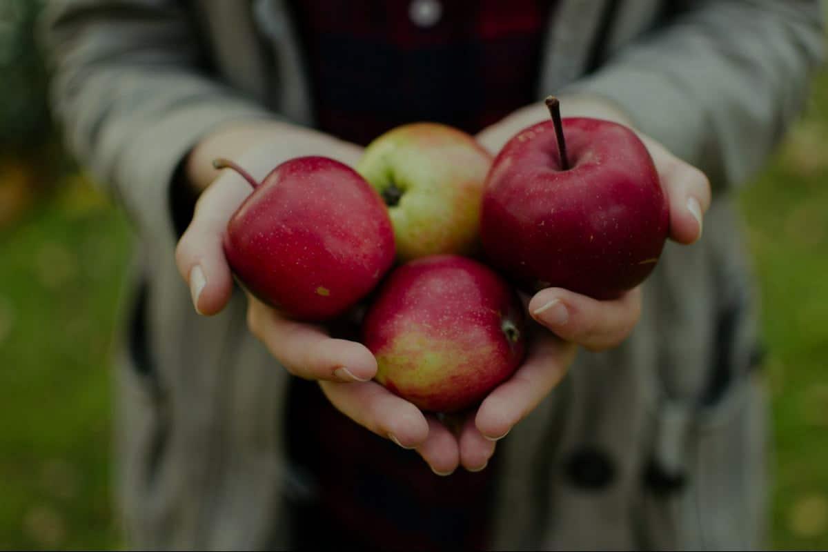 7 فوائد صحية مذهلة للتفاح