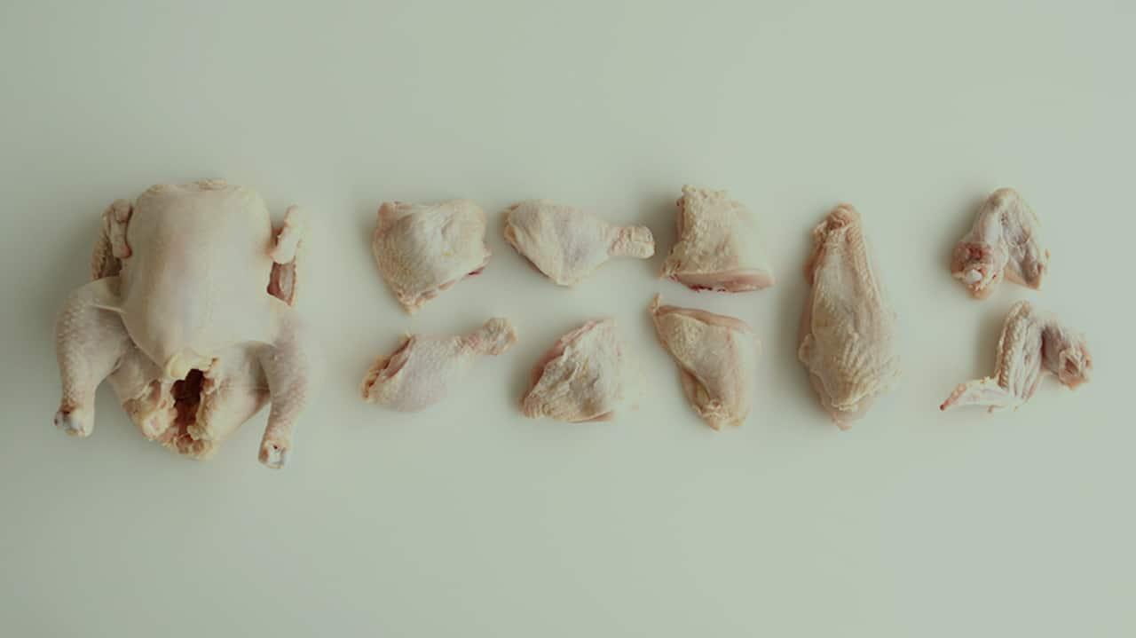 الدجاج والنقرس